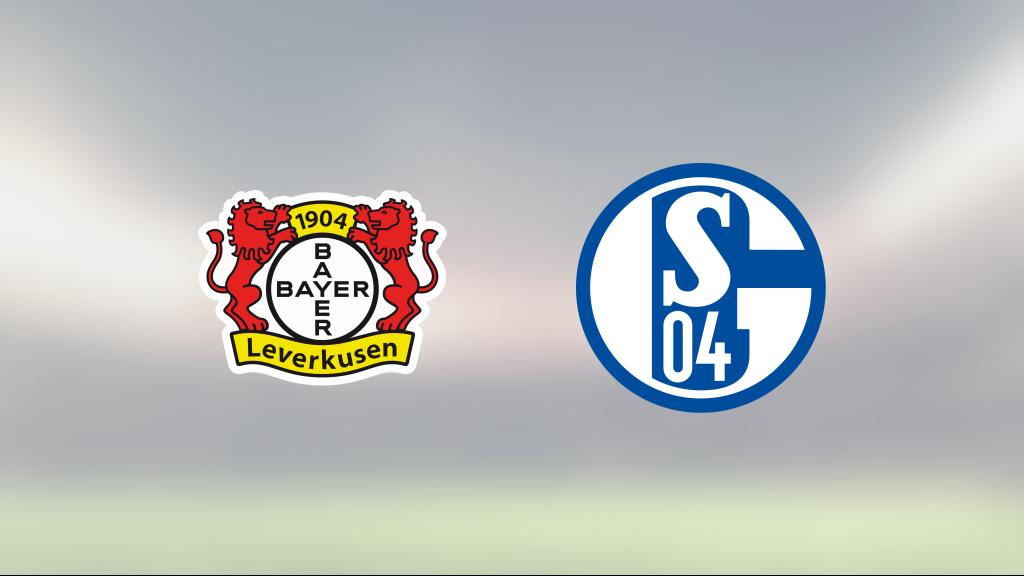 Lucas Alario och Patrik Schick avgjorde när Bayer Leverkusen slog Schalke 04
