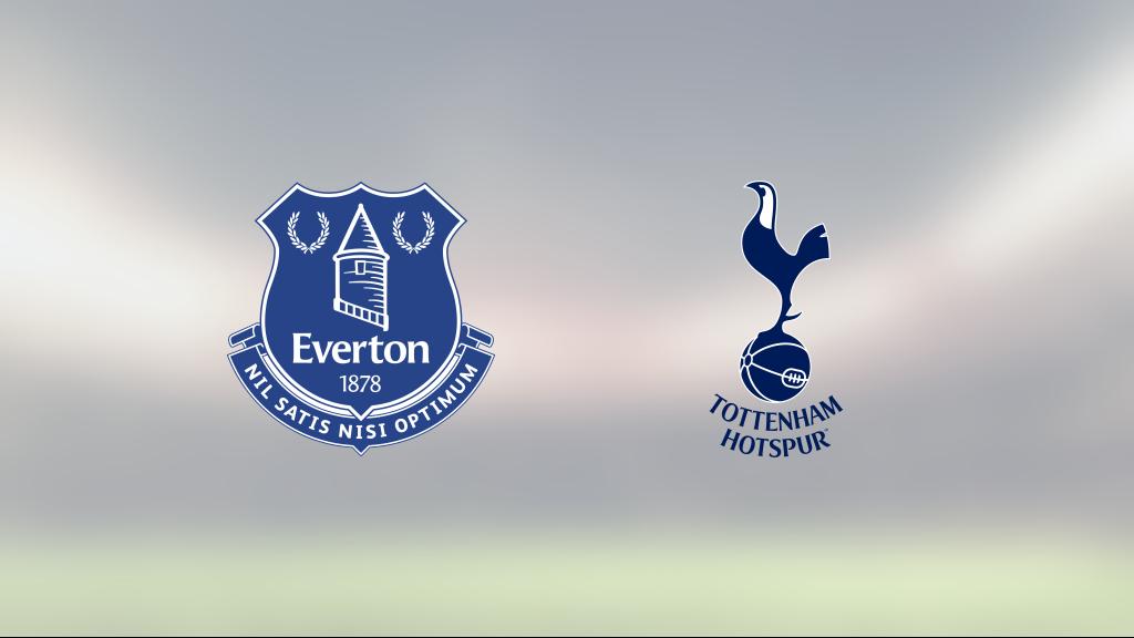 Delad pott för Everton och Tottenham