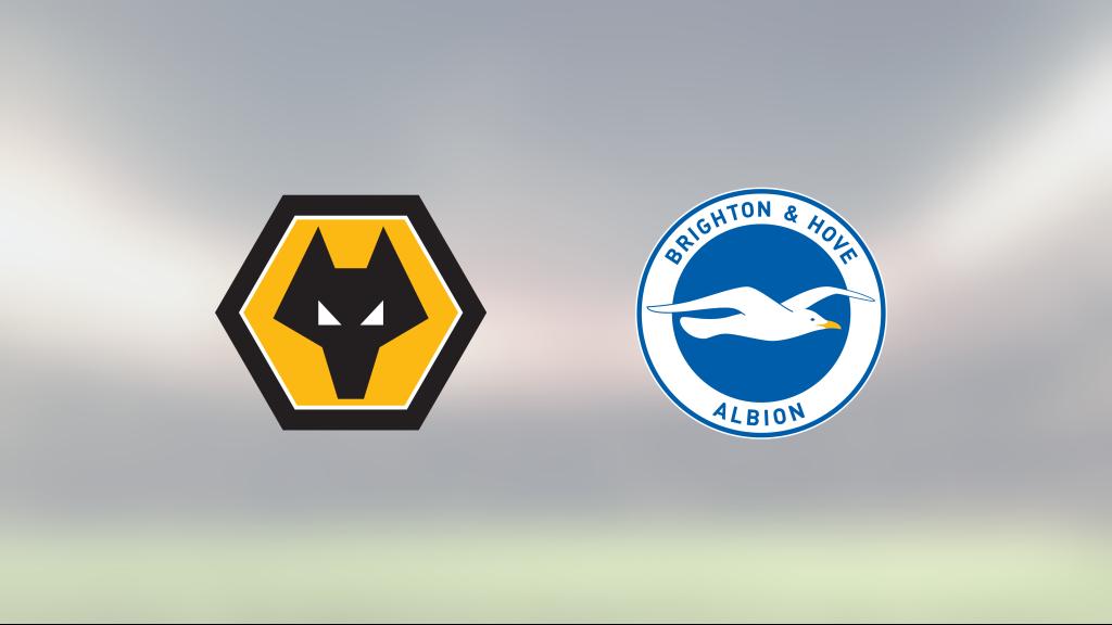 Morgan Gibbs-White och Adama Traore målskyttar när Wolverhampton vände mot Brighton