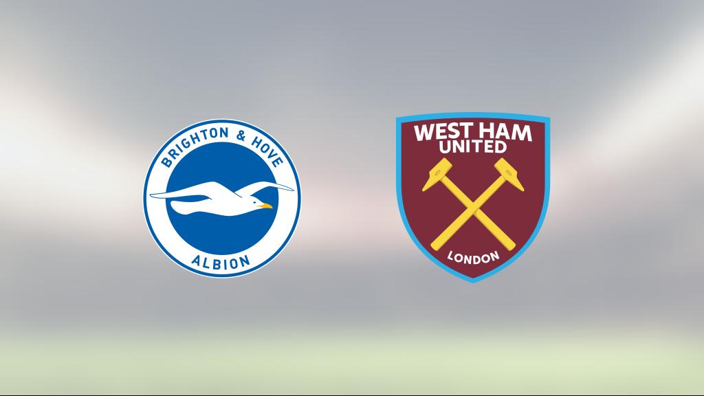 Delad pott när Brighton tog emot West Ham